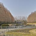 ヨーロッパ風庭園は冬眠中