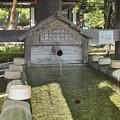 写真: 京都平野神社の手水屋