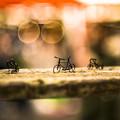 針金細工2@第四回東京蚤の市;2013秋