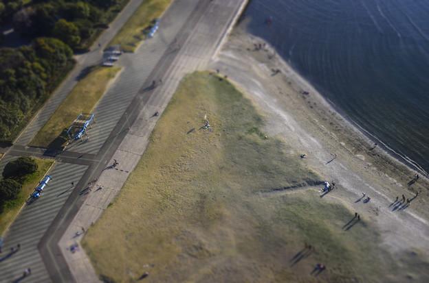 Photos: 凧を揚げる人