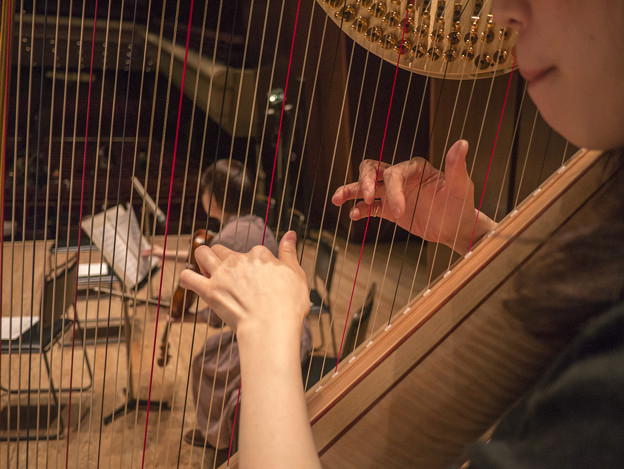 僕の居る鍵盤の位置からは、Harpを通して客席が透けて見えて居るのです