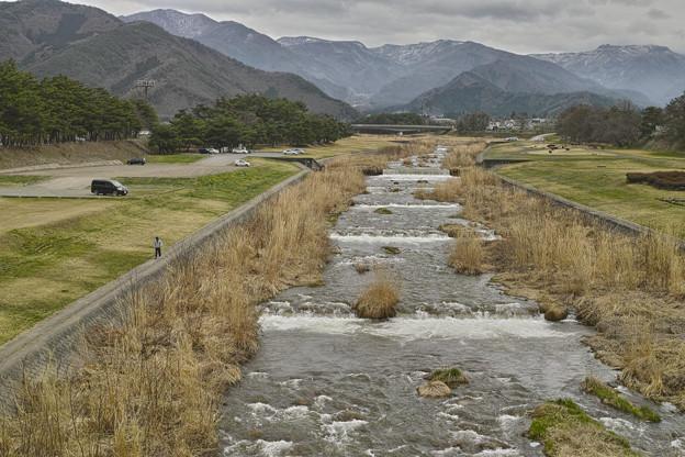 Photos: 百々川を歩く、、