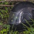 写真: 雑草を保護するためのヘルメット(違)