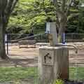 写真: あまり観ない形の井戸