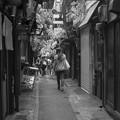 Photos: 抜け道