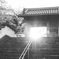 写真: 後光(^^)v