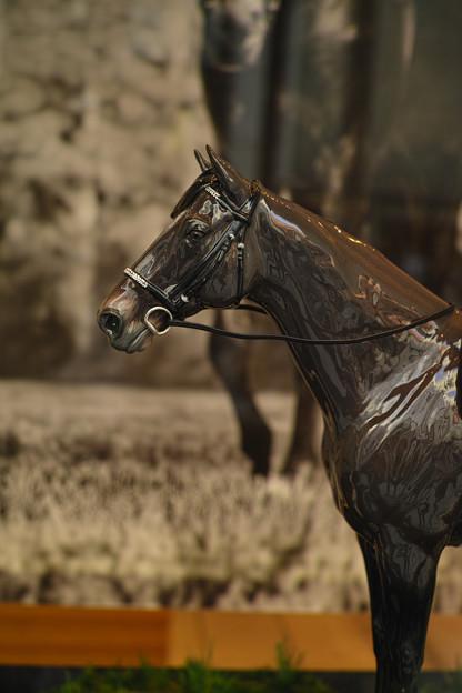 名馬の肖像