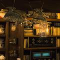 Photos: お気に入りのcafe
