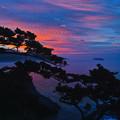 写真: 式根島の朝焼け再び