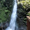 Photos: 塩川の滝全貌