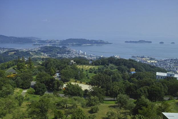 Photos: 岡山県牛窓のオリーブ園から瀬戸内海を臨む