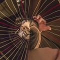 Photos: Fantasy Harp
