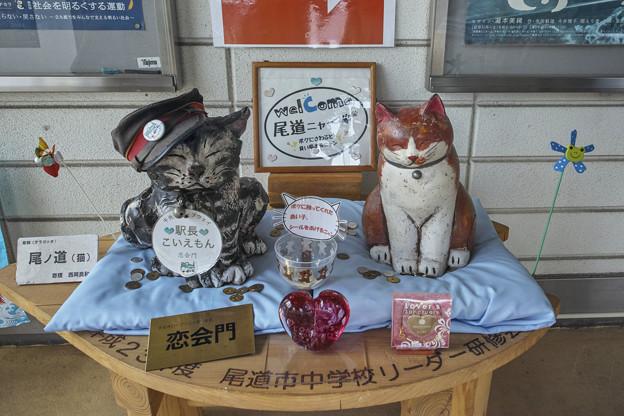 Photos: 尾道のGonzález(爆)