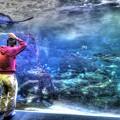 気づいたら水の中に、、、(#^.^#)