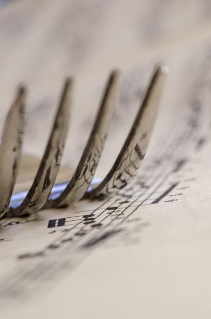 音符の共鳴ならぬ、共映、あるいは、響映、
