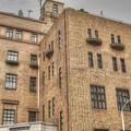 写真: 学士会館の屋上緑化(爆)