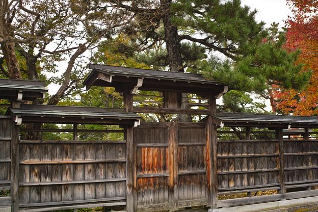 Photos: 秋の門