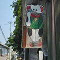 写真: 尾道・招き猫美術館の看板