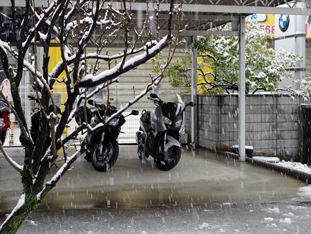 雪の2月14日試乗車