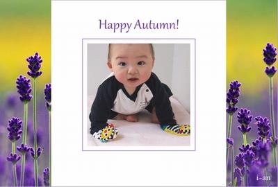 Photos: lavender autumn-sample