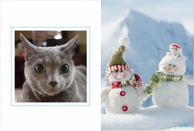 Photos: winter1-sample