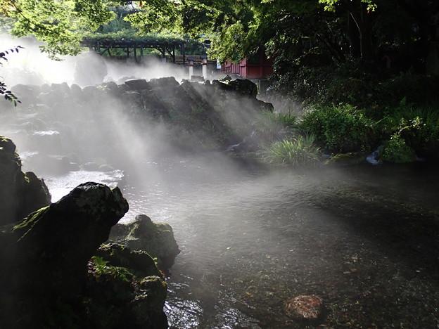 神社の雨上がり