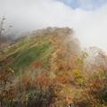 Photos: 登山 能郷白山08