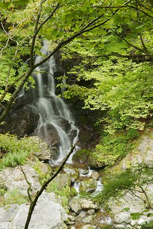 中津峡にかかる滝