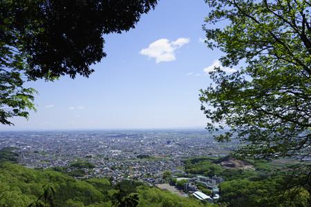 栃木の街を望む