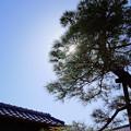 Photos: 快晴♪