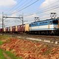 写真: EF65-1127