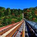 Photos: 2012年 11月20日 大井川鉄道井川線 奥大井レインボーブリッジ (2)