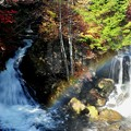 Photos: 虹と紅葉のコラボ