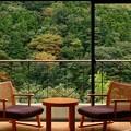Photos: 客室から見る湯坂山の紅葉