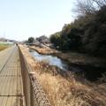 写真: 130302 鶴見川