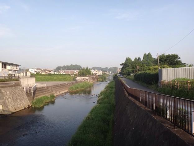 写真: 130523 鶴見川01
