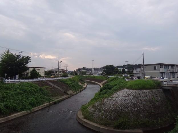 写真: 130728 鶴見川01