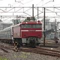 415系1500番台K544編成 KY入場配給 (6)