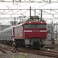 415系1500番台K544編成 KY入場配給 (8)
