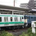Photos: EF64 1031+E233系7000番台ハエ110