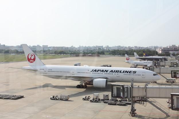 日本航空 JAL BOEING777-289 JA009D