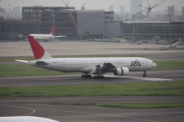 JAL ボーイング777-200 JA8981 (2)