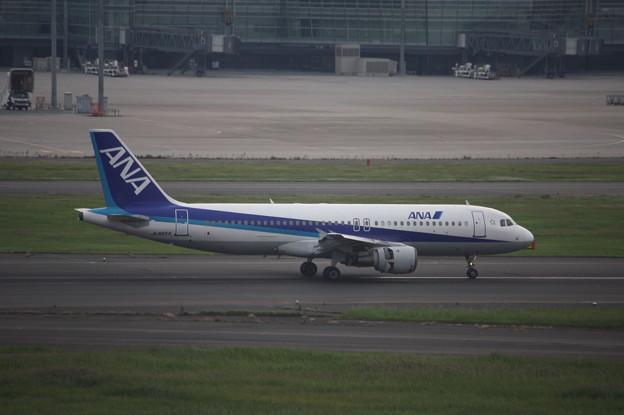 ANA エアバスA320-200 JA8654 (2)