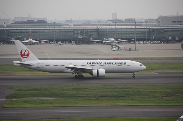 JAL ボーイング777-200 JA007D (5)