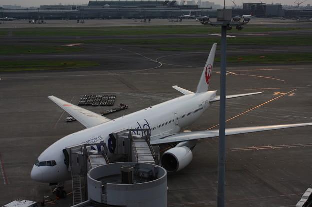 JA771J 鶴丸oneworld (1)