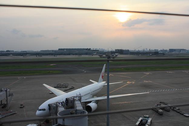 夕陽をバックに JA771J 鶴丸oneworld