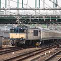 Photos: E233系6000番台H004編成 新津配給 (12)