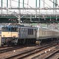 Photos: E233系6000番台H004編成 新津配給 (13)