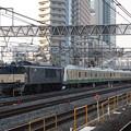 Photos: 横浜線E233系6000番台H004編成 配給輸送 (7)