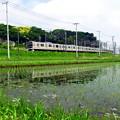 JR総武本線・物井駅付近